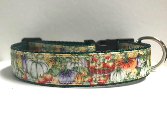 """1"""" Orchard Dog Collar"""