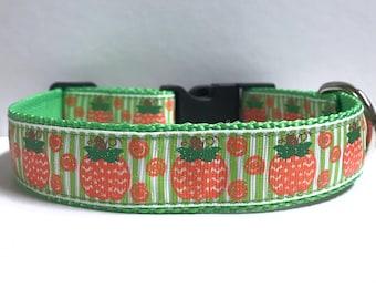 "1"" Chevron pumpkins on strips Dog collar"