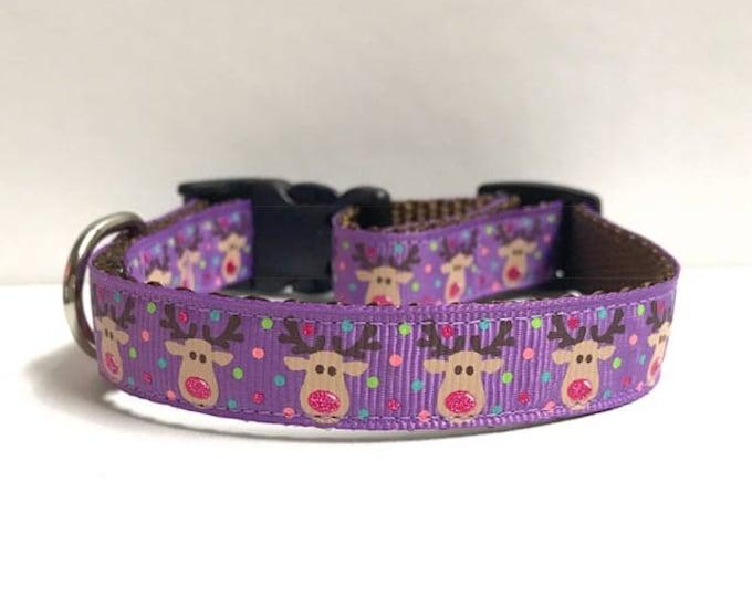 "5/8"" Reindeer on Purple Collar"