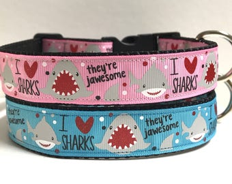 """1"""" I love Sharks, they're jawesome collar"""
