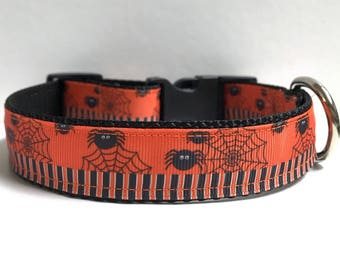 """1"""" Stripes and Spiders Dog collar"""