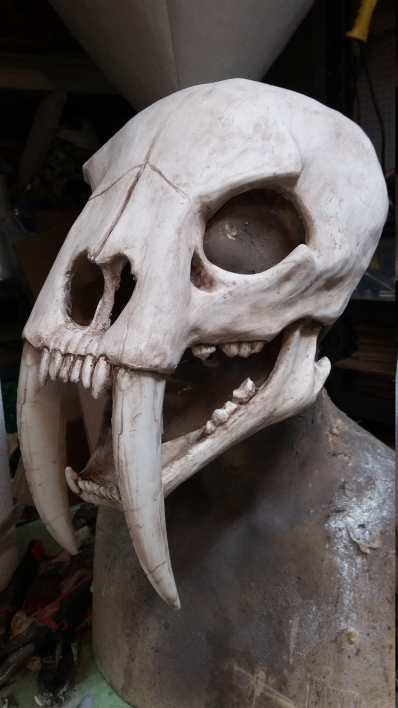 1a8a8afb7 Sabertooth cat skull mask | Etsy
