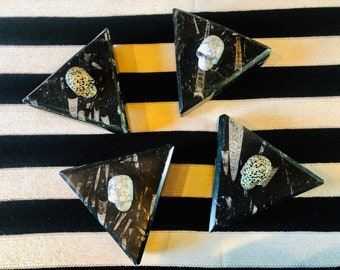 Triangular Black Orthoceras Fossilized Boxes with Choice of Jasper Skull Adornments.