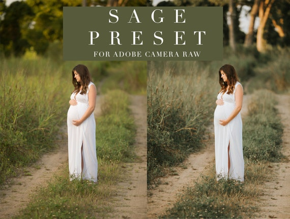 Sage - Adobe Camera Raw Preset / ACR Preset for Photographers - One Click  Edit - Instant Digital Download
