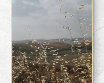California Hills, Field, Rolling Hills, Printable Wall Art for Home or Office
