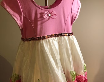 Dress Up Clothes / Costume Size 2
