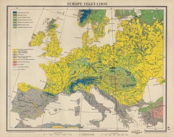 VEGETATION PLANTS EUROPE Map, 1950 countries nations atlas antique map, 11  x 9 Inches, France Italy Spain Map, Map of cities Map Decor 24