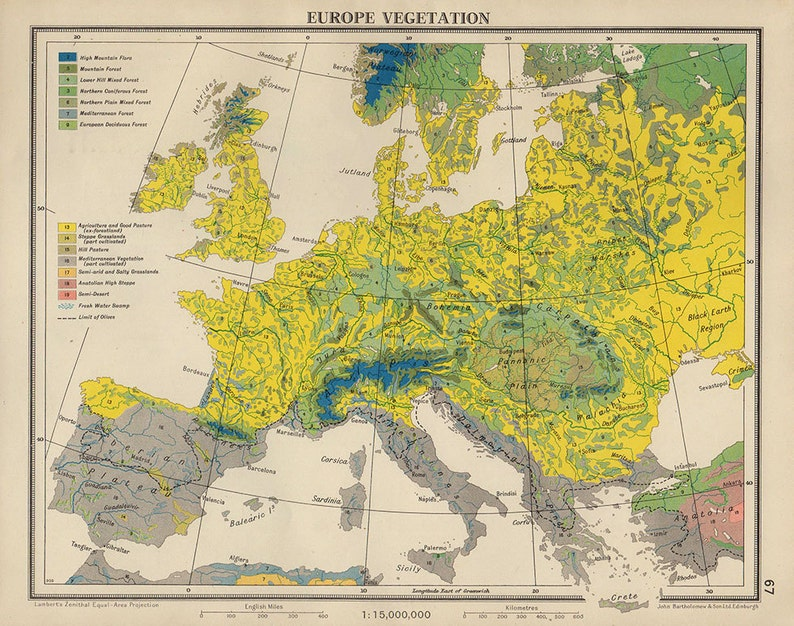 Map Of Europe 1950s.Vegetation Plants Europe Map 1950 Countries Nations Atlas Etsy