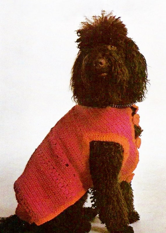 Dog Sweater For Medium To Large Dogs With Knitted Collar Etsy