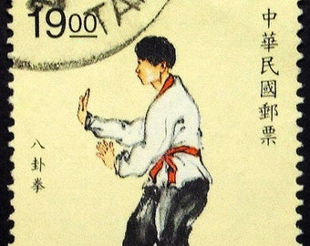 Chinese Martial Arts, Kung Fu -Handmade Framed Postage Stamp Art 22391AM