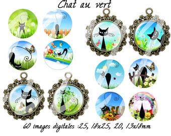 60 digital images for cabochon (cat) chat au vert (25,18x25,20,13x18mm)
