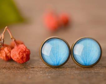 Hydrangea earrings, flower earrings,  blue earrings, floral earrings, nature earrings, nature jewelry, post earrings, stud earrings