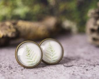 Fern earrings, green leaf earrings, leaf stud earrings, post earrings, stud earrings, leaf jewelry, nature earrings, picture earrings