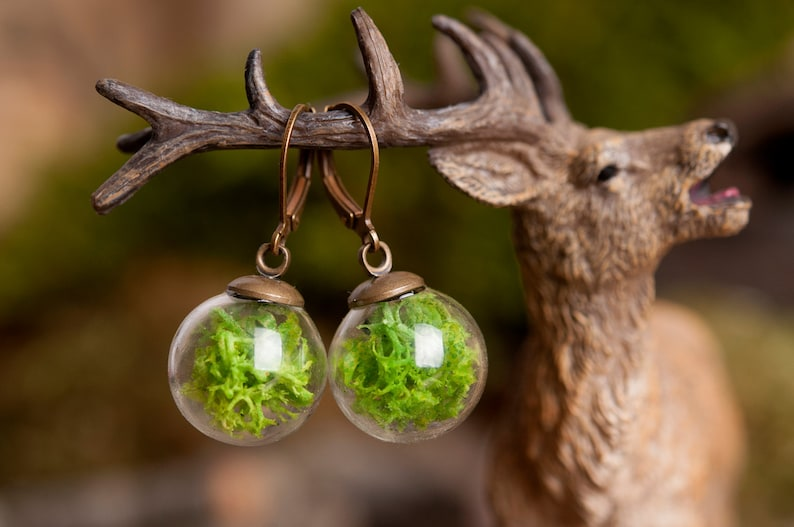 Moss earrings gift for women mom birthday gift terrarium image 0