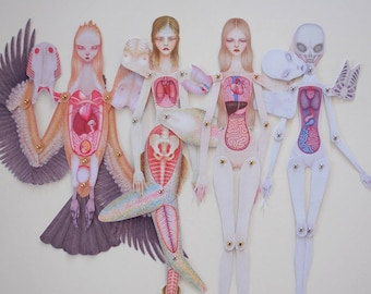 Set von 4 Papier-Anatomie-Puppen - Mensch, Meerjungfrau, Alien & Harpyie