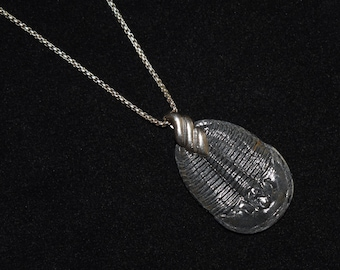 25x40 mm. Compleat Trilobite Fossil Pendant in Sterling Silver