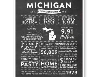 State Print, Michigan State, Michigan Map, State Art, State Poster, State Infographic, Mens Gift, State Facts, Michigan Art, Home Town Love