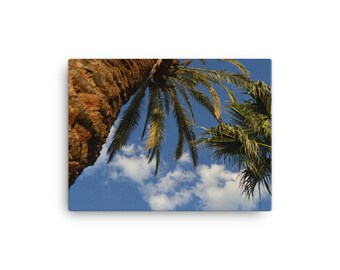 Palm Trees & Clouds on Canvas