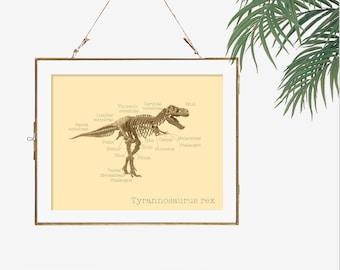 Tyrannosaurus rex science gift idea nerd art dinosaur fossil dinosaur bones art science chart skeleton dorm decor science biology print art