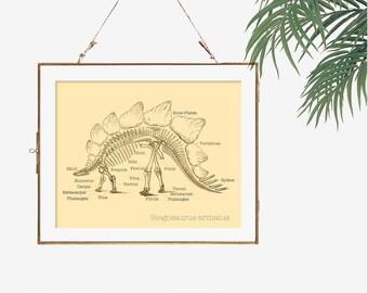 Gift idea for dad Stegosaurus print dinosaur fossil nerd art poster dinosaur bones art dinosaur skeleton science poster biology print