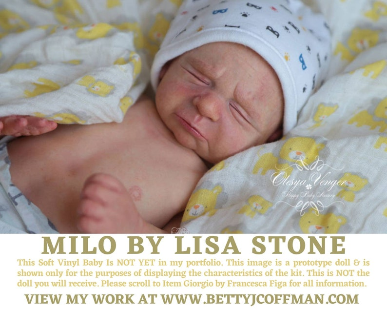 CuStOm PREEMIE Milo by Lisa Stone 16 Inches  Full Limbs image 0