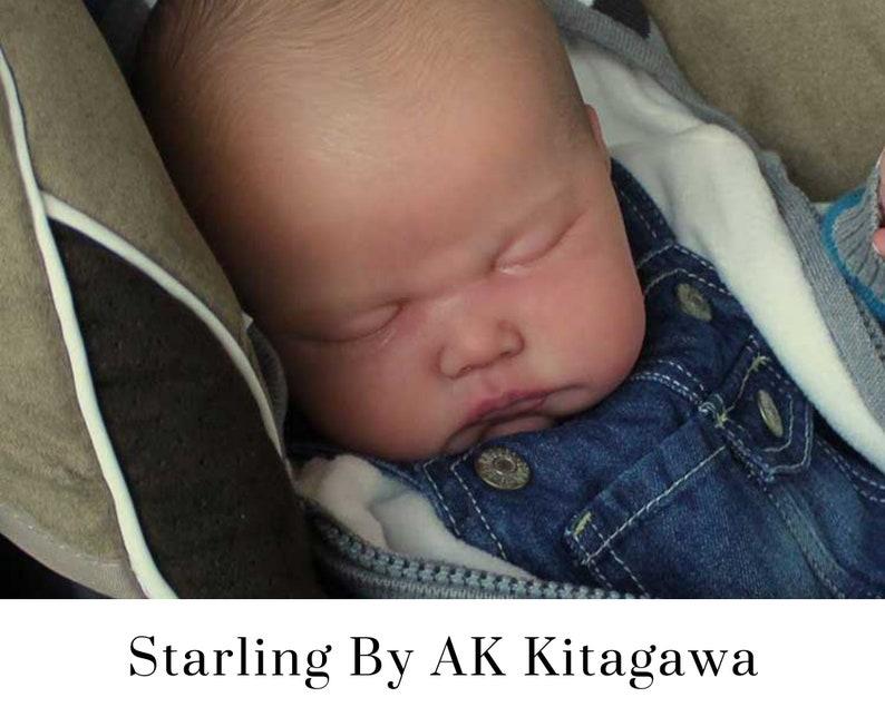 CuStOm Starling by AK Kitagawa 23 Inches  Full Limbs image 0