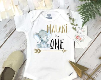 First Birthday, Elephant Theme, Birthday Shirt, 1st Birthday, Personalized Birthday Shirt, Boy Birthday, Birthday Onesie®, Best Seller baby
