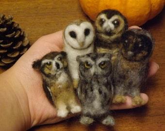 Custom Needle Felted Mini Owl