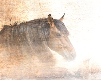 Horse Photography Canvas Wall Art, Equine Decor, Textured Art