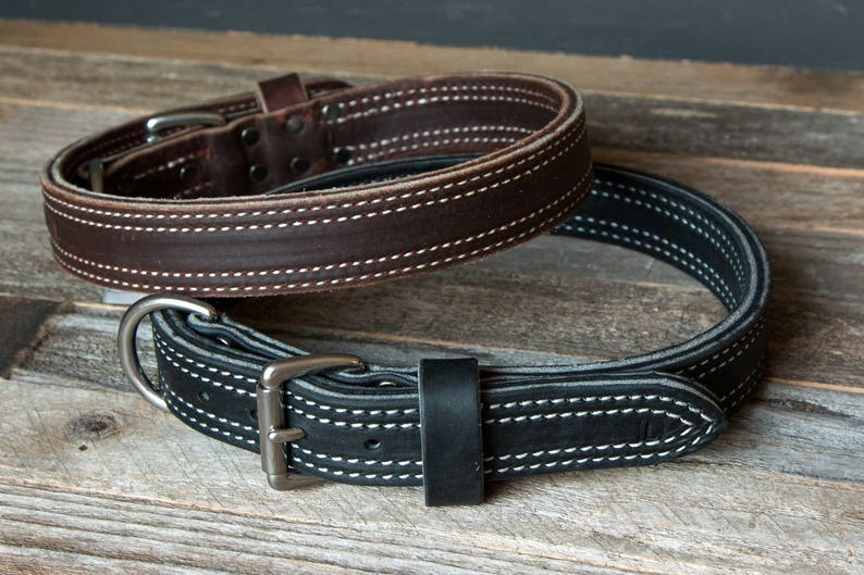 1 14 wide Latigo Leather Agitation Dog Collar