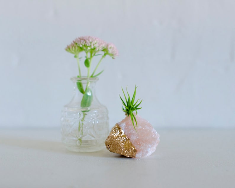Pink Salt Crystal Air Plant Birthday Gift Coworker Mom Lover Long Distance Friend Thank You
