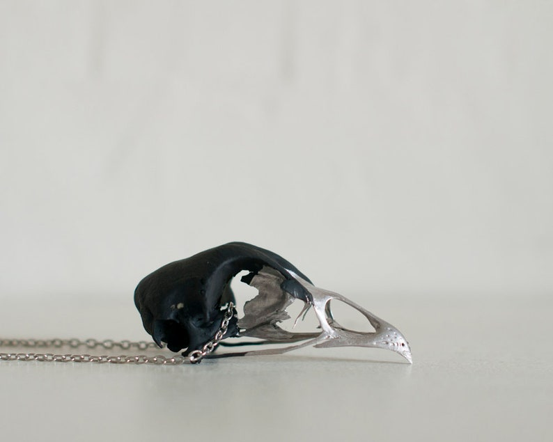 Silver Bird Skull Necklace Real Animal Bone Necklace Animal image 0