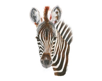 Safari Nursery Print, Zebra Watercolor Art, Animal Portrait, Zebra Art, Animal Art, Wildlife Art, Black, Red, Brown