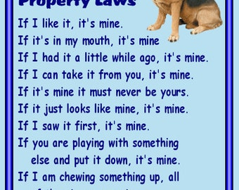 BLOODHOUND Property Laws Magnet Personalized With Your Dog/'s Name