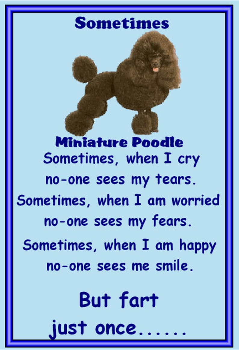 Miniature Poodle  Fridge magnet Gifts for dog owners various designs available