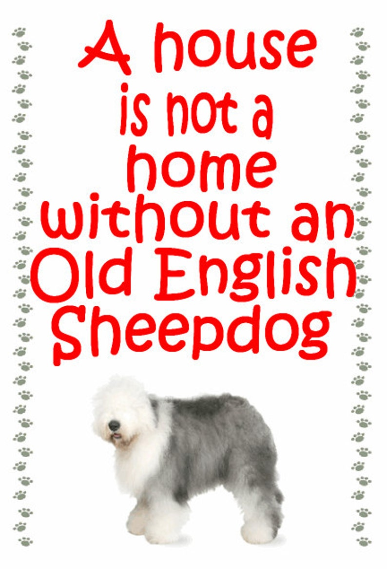Gifts for dog owners, Old English Sheepdog Fridge magnet - various designs  available