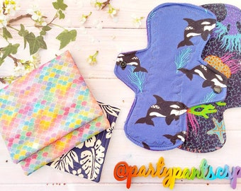 Starter kit, 2 x cloth pads in a choice of 3 sizes with wet/dry storage wallet, cloth wipe and drying strap, eco period
