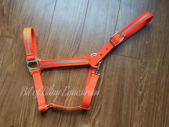 Orange Reflective Glo Halter