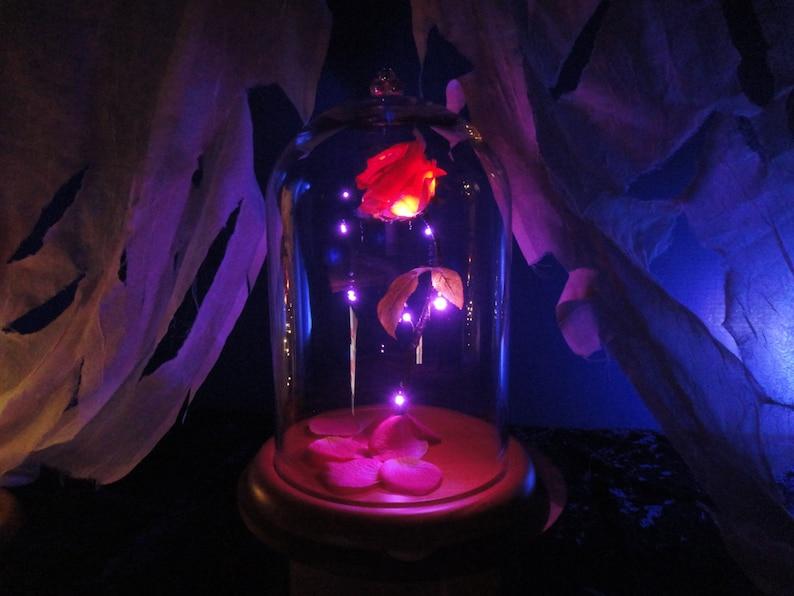 Disney Beaute Et La Bete Enchante Rose Belle Verre En Forme De Etsy