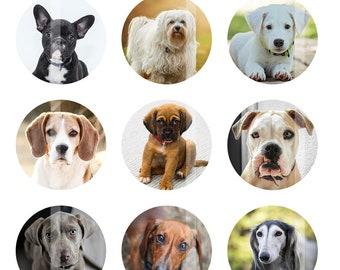 Dogs Bottlecap Images, Digital Images for Bottle Cap Pendants, 1 Inch Circles, Digital Collage Sheet