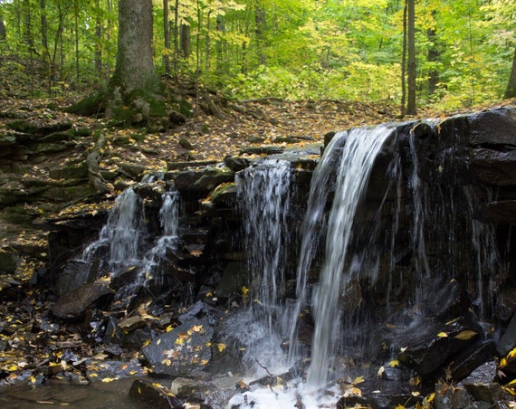 Canvas Wrap Art Print Local Photography Nature Trail Autumn Leaves Lockport NY Waterfall