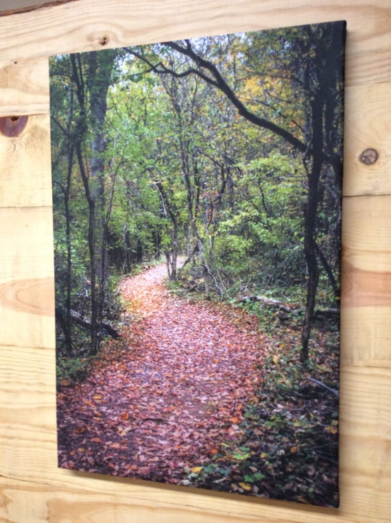 Canvas Wrap Art Print Local Photography Nature Trail Autumn Leaves Lockport NY Fall Colors