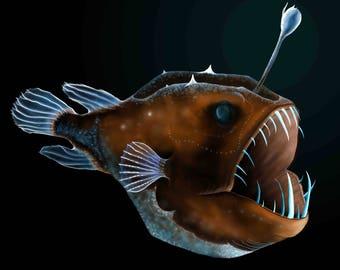 Angler Fish Drawing PDF