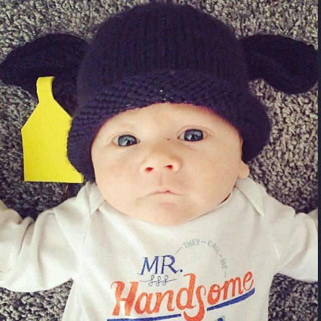 5558122f001 Knit Newborn Black Angus Calf hat