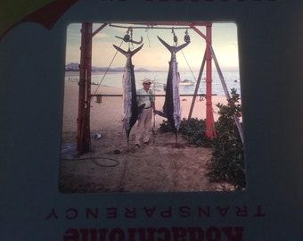 Kodachrome slide | Etsy