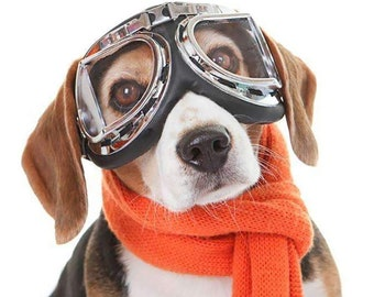Dog Sunglasses, Goggles, Eye Wear Protection Waterproof Pet Sunglasses for Dogs  Over 15 lbs