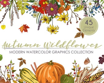 Autumn Wildflower Watercolor Graphics Collection Fall Clipart Set