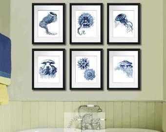 Beach decor Navy decor Jellyfish Print Set of 6 Sea life art print 8x10 Coastal Decor Bathroom Wall Art,  Bathroom decor