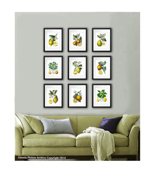 Lemon Kitchen Decor At Target: Kitchen Wall Decor Fruits Wall Decor Botanical Prints Set