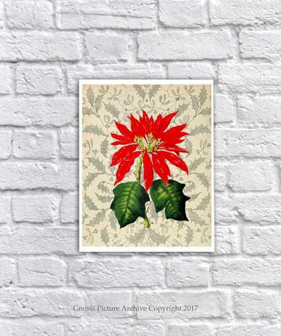 Christmas wall Decor set of 6 unframed Holiday Art Prints Poinsettia Holly Decor